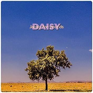 Daisy (Single Version)