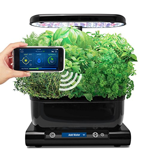 AeroGarden 901074-1100 Classic 6 WiFi Garden, Wi-Fi Enabled, Black