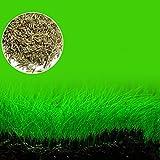 EMVANV - Planta para acuario con forma de semilla de césped para...