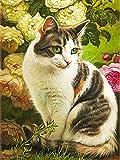 Pintura de diamante gato 5D hecho a mano bordado de diamante