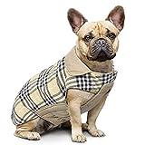 Ducomi Royal Manteau pour Chien Réversible avec Imprimé Ecossais, Veste Rembourrée et Imperméable d'un Côté, Chaud et Doux Polaire de l'autre, Petite et Moyenne Taille en Automne et Aiver (Beige, M)