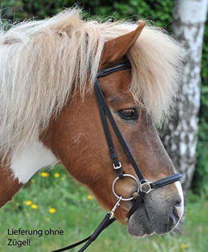 HKM Reittrense für Islandpferde, schwarz, 20