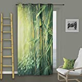 Soleil d'ocre Ösenvorhang, Bambus-Motiv, 140 x 260 cm, Polyester, grün
