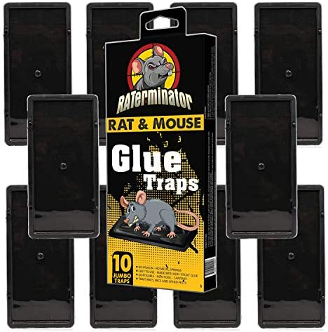 10 Mouse Rat Glue Traps Jumbo Trap no See Kill Zapper Sticky mice Traps for House Works for product image