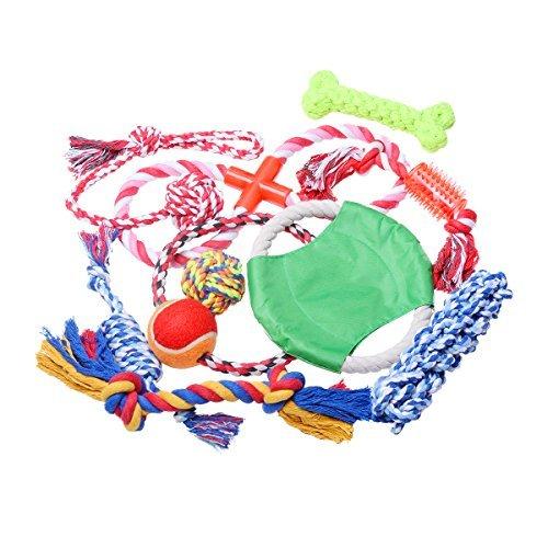 LEPPI Juguetes para perro Boredom con cuerda para masticar dental, juego de 10 unidades, colores variados