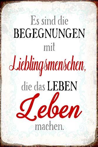 FS Spruch Begegnung mit Lieblingsmenschen Blechschild Schild gewölbt Metal Sign 20 x 30 cm