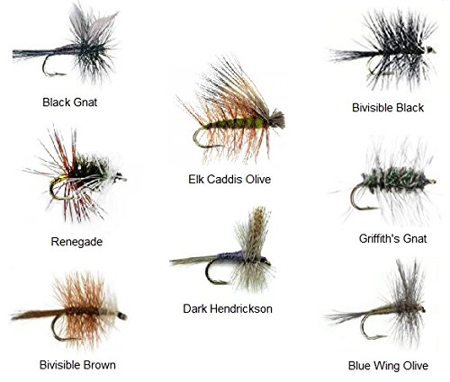 Fly Fishing Trout Flies Assortment - 32 Flies and Fly Box - 8 Patterns Black Gnat, Renegade, Griffith