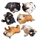 TOYMANY 6PCS Realistic British Bulldog Figurines, Small Solid Lying and Sleepy Dog Figures Toy Set, Christmas Birthday Gift Party Favor School Project Decoration Cake Topper for Kids Toddlers Children