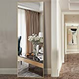 MAYEERTY Floor Mirror Full Length Body Full Size Metal Frame Wall Mounted Leaning Hanging Bedroom Living Room Dressing Mirrors (59x16in, Gold) (AA01017ZZE001-USAM005)