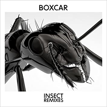 Insect (Remixes)
