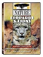 Nature: Leopards & Lions [DVD] [Import]
