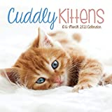 2021 Cuddly Kittens Wall Calendar