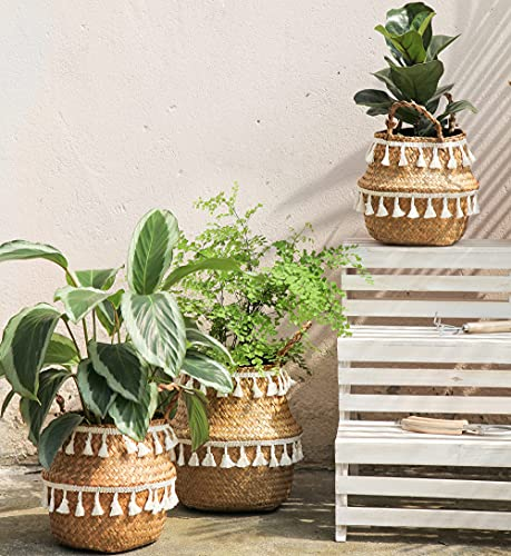 Janzaa Planter Boho Basket 3 Pack Tassel Seagrass Baskets with Handles Plant Pots Woven Baskets for...