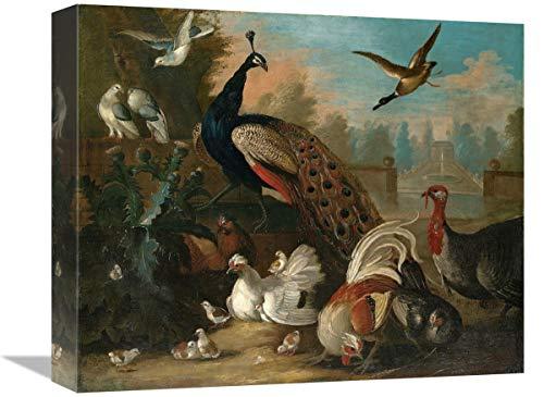 Global Gallery Lienzo con diseño de Pavo Real y Otros pájaros, 40,6...