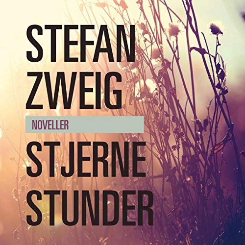 Stjernestunder cover art