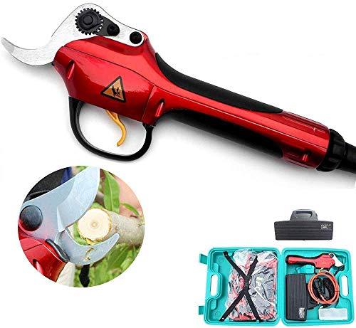 LLSS Sécateur électrique, Outils de Coupe Professionnels Fruits pour Arbres Coupe Outils de Coupe pour Le Jardinage 30 mm