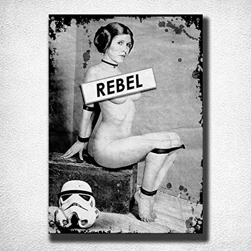 JTY store Vintage Wandkunst Dekor Zeichen Rebel Princess Leia Vintage Home Bar Pub Club Cafe Man Cave Dekor 20CM X 30CM Metal Tin Sign Blechschild WJ1059