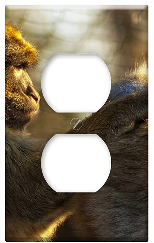 Switch Plate Outlet Cover Monkey Zoo Ape Animal Mammal Monkey Baby
