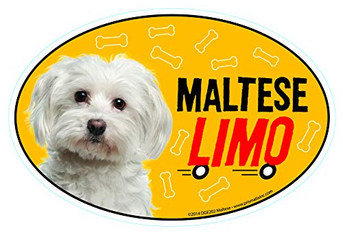 Prismatix Decal Maltese Car Magnets: Maltese Limo on Board - Oval 6' x 4' Auto/Truck/Refrigerator/Mailbox (Funny Car Decals, Dog Magnet, Maltese)