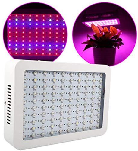 LED-groeilicht 100W kamerplantlicht Volledige spectrum groeiende lamp Kamerplantlicht voor kas hydrocultuur groenten en bloemen