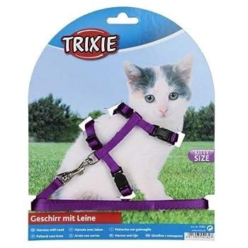Trixie Set Collier Harnais pour Chatons et Chats Plomb - Coloris aléatoire