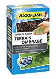 ALGOFLASH Semence Gazon Terrain Ombragé, 900g