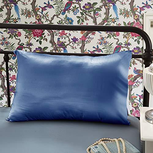 OLESILK - Fundas de almohada de seda de morera 100% natural para cabello y piel, 22 Momme, con cremallera oculta en caja de regalo, 1 unidad, seda sintética, azul marino (Ocean Blue), 65x65cm