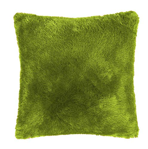 Value Comfort Home Set of 2 Super Soft FAUX FUR Mink FILLED Cushions - Size & Colour Options - 24' Fern (2)