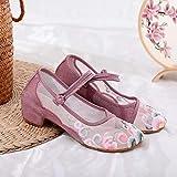 RHH Shop Gauze Patchwork Mujeres algodón Bordado Bloque Zapatos de talón Verano Ver a través de Bombas de Malla Elegantes Damas 4 cm Tacones Comodidad (Color : Pink, Size : 39 EU)