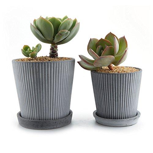 T4U Planta Maceta de Suculento con Bandeja Redonda Ceramico linea Moderna Paquete de 2, Cactus Maceteros de Ventana Cajas Decoracion para Mesa de Comedor Regalo para Cumpleanos Boda Navidad