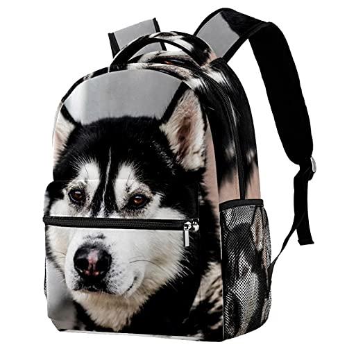 XiangHeFu Mochila para niñas adolescentes Mochila escolar para niños Bolsa de viaje para caminar al aire librePerros de Alaska Perro trineo Mochila estampada