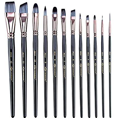 Transon Artist Paint Brush Set of 17pces with Brush Organizer for Oil, Acrylic, Watercolor, Gouache, Painting…