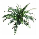 Leaf Planta Artificial de Hojas de plástico Negro con diseño de Maceta, Helecho de...