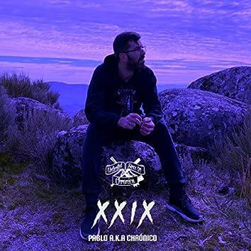 X X I X