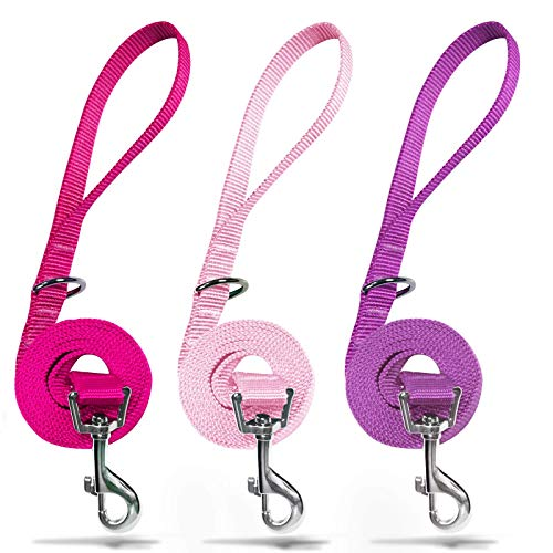 azuza 3 Pack Nylon Dog Leashes,Strong & Durable Basic Style Leash with Easy to Use Collar Hook,Available in Multiple Lengths for Puppy Small Medium and Large Dogs, Hot Pink/Pink/Purple