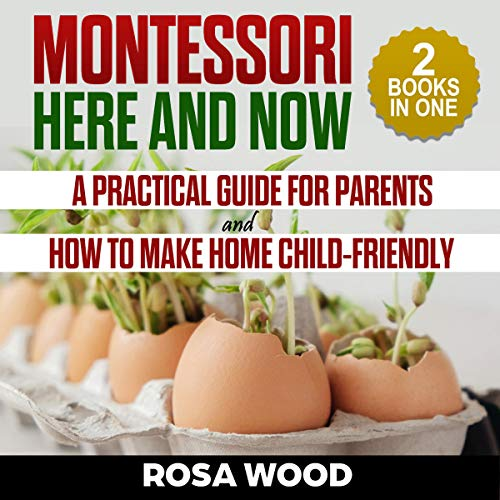 Montessori Here and Now audiobook cover art