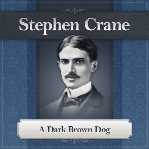 A Dark Brown Dog audiobook cover art