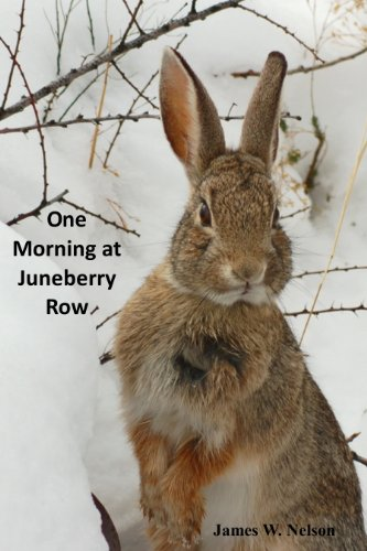 One Morning at Juneberry Row: Sybil, the...
