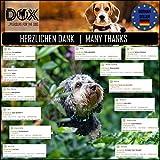 Hundehalsband Halsung aus Premium-Nylon verschiedene Farben und Groessen XS, S, M, L, XL: verstellbar, stabil, bequem, weich, farbig, fuer grosse und kleine Hunde (Leine und Geschirr separat erhaeltlich) (Farbe Schwarz, Größe XS – 1,0 x 21-30 cm) - 8