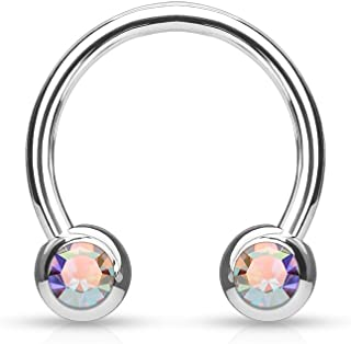 Front Facing Jewel Set Balls IP Over 316L Surgical Steel WildKlass Circular/Horseshoes for Nipple, Septum and Ear Cartilage Piercings