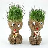 wgkgh La nueva muñeca de hierba de cabeza de bonsái, una interesante muñeca de cabeza de hierba de rápido crecimiento, para decorar habitaciones, oficinas y acuarios