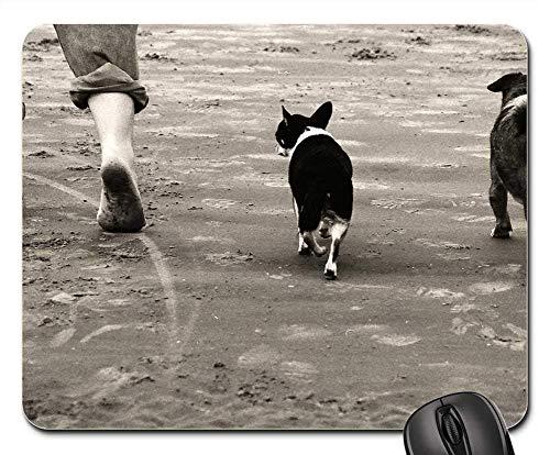 Gaming-Mauspads, Mauspad, Walking Beach Dogs Seashore Landscape