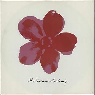 "The Love Parade - Dream Academy, The 7"" 45"