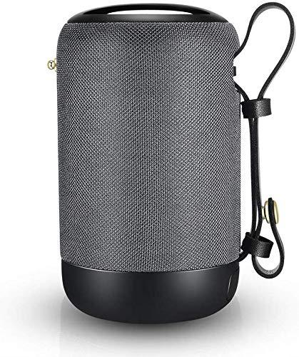 Bloototh Lautsprecher Musikbox Bluetooth Box D2, USB Handy Bluetooth Drahtloser Lautsprecher Klein Soundbox mit Stereo und Tiefen Bässen IPX56 Wasserdicht, TWS, Freisprechfunktion, 12h/15m/AUX/SD