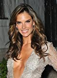 The Poster Corp Alessandra Ambrosio at Arrivals for Amfar