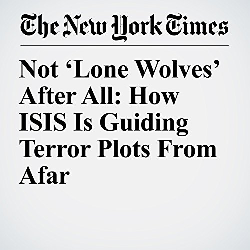 Not 'Lone Wolves' After All: How ISIS Is Guiding Terror Plots From Afar copertina