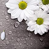 QHJIAFANG fotomurales Plantar flores, margaritas Fotográfico Wallpaper Mural murales decoración paredes 3d La seda xxl art Papel Pintado :250 x 175 cm(W x h)