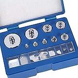 Kalibrierung Gewichte, 17teilig Kalibriergewicht Set 10mg - 100g Präzision Kalibrierung Abweichung...