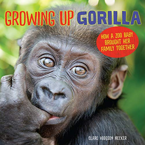 Growing Up Gorilla: How a Zoo Baby Brought Her Family Together