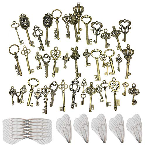 Nsiwem Vintage Key Charms 46 Pieces Skeleton Keys Rustic Key Keys Charm Pendants Set Antique Bronze with 50 pcs White Dragonfly Wing Charms for DIY Jewelry Making